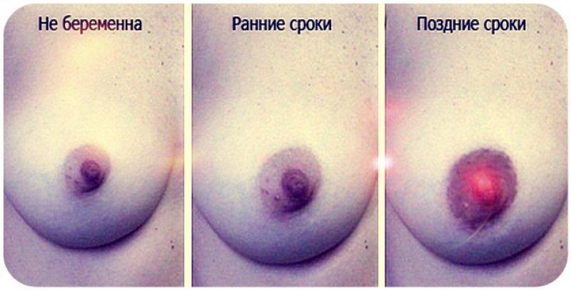Первые признаки беременности на ранних сроках, фото