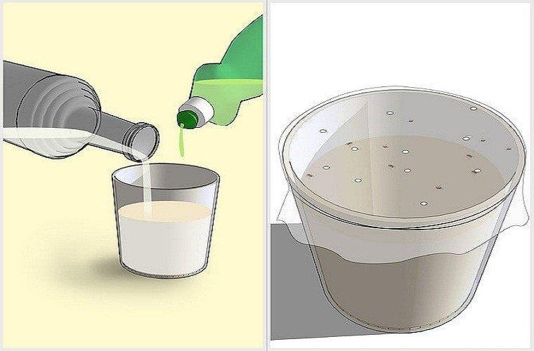 Мошки на кухне как избавиться народными средствами
