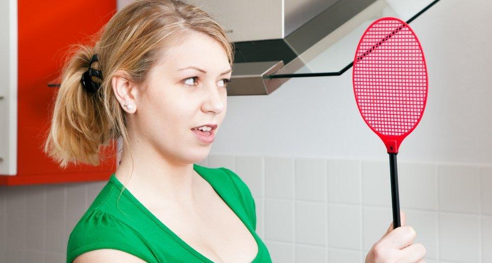 Откуда берутся мелкие мошки на кухне