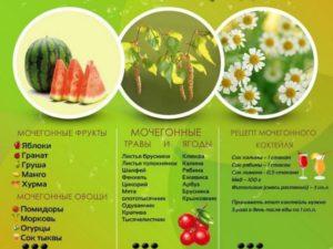 Мочегонные травы от отеков народные средства список