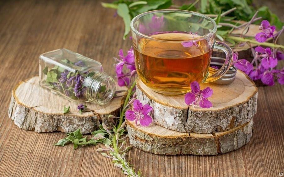Иван чай противопоказания