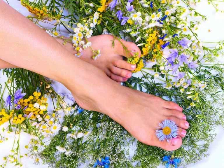 Варикозное расширение вен на ногах лечение народными средствами