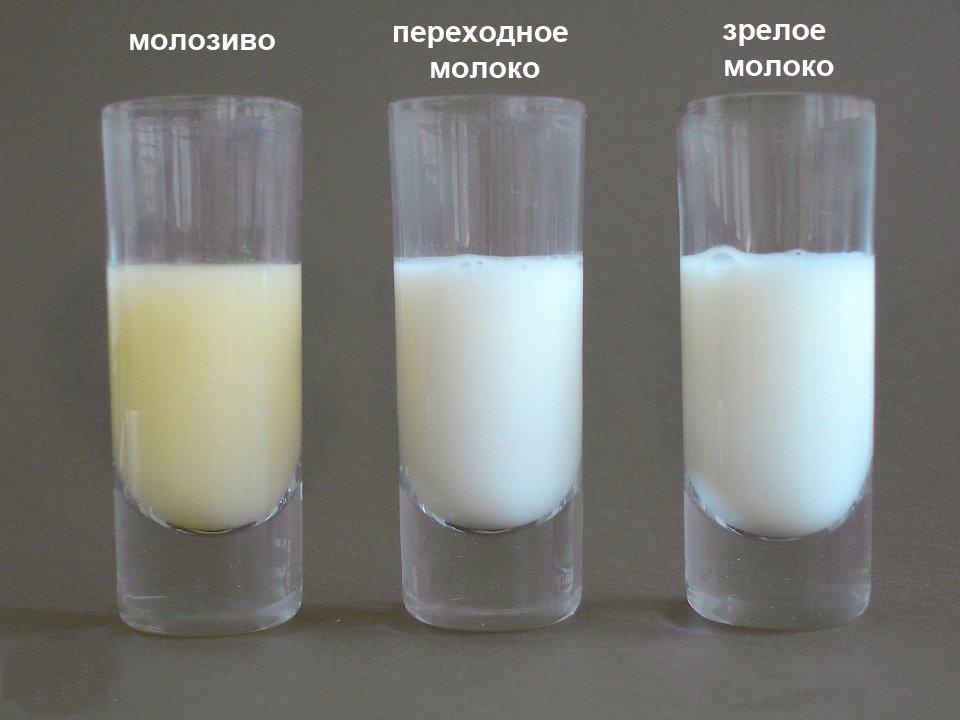 Нормальный цвет грудного молока