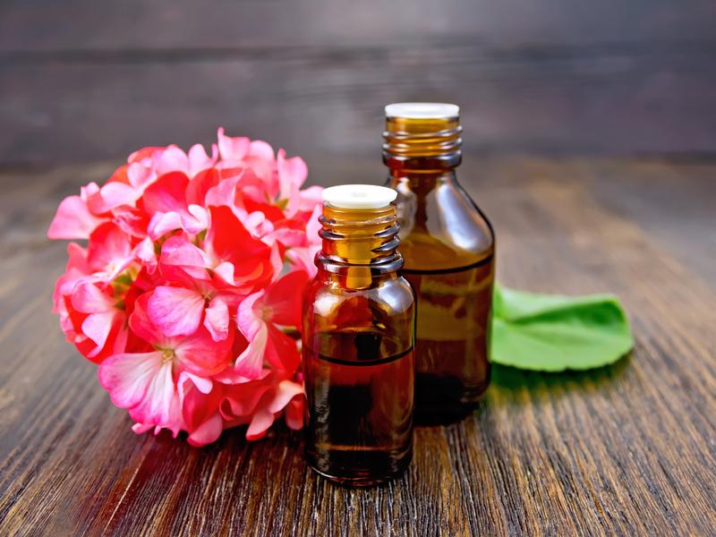Эфирное масло герани свойства и применение