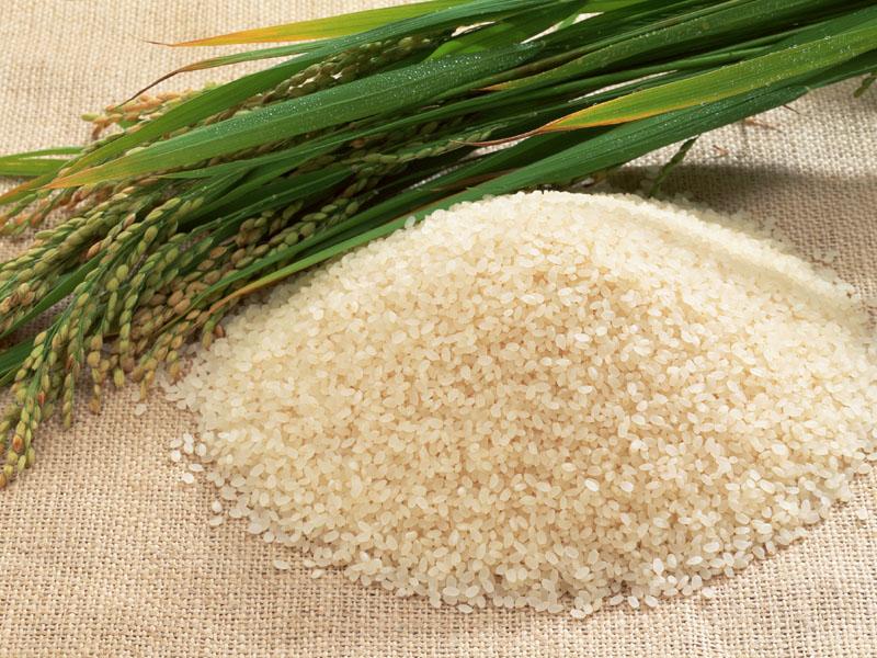 Как сварить круглый рис рассыпчатым в кастрюле на электроплите