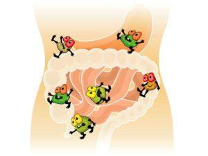 Кишечная инфекция у взрослых лечение и признаки